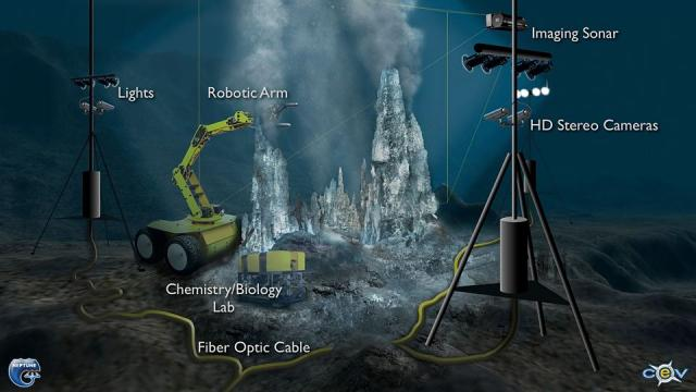 Artist's concept of cabled sensors collocated at a seafloor vent cluster (NEPTUNE Project; www.neptune.washington.edu and CeV)